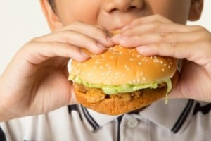 boy eating chicken sandwich